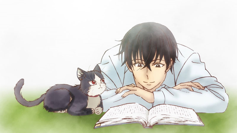 Subaru and Haru the cat reading a book